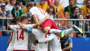 Danmark firar mål.
