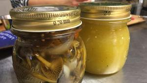 Pöydällä kaksi säilykepurkkia, toisessa on hapatettuja sieniä, toisessa keltaista hilloa.