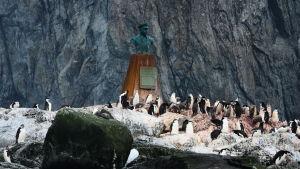 Monument till Luis Pardo, kaptenen på skeppet Yelcho som räddade de strandade besättningsmännen Elefantön
