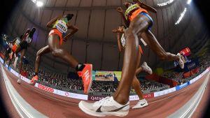 Löpare under VM 2019.