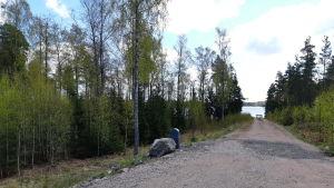 En väg ner till en blivande badplats på Pickala-Marsudden, där det ska byggas en brygga. Till vänster på bilden finns bara skog, där ska byggas hus på tomter.