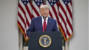 Man i blå kostym och röd slipps håller presskonferens framför rad med amerikanska flaggor. Mannen är USA:s president Donald Trump.