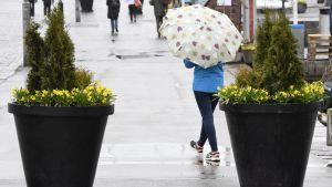Två stora blomkrukor och en person med paraply på ett regnigt torg.