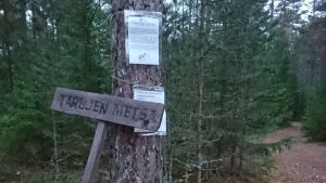 """tallskog och stig, skylt där det står """"Tarujen metsä"""" vid ett träd där två plastade papper med text finns upphängda"""