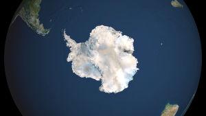 Bild på Antarktis från rymden