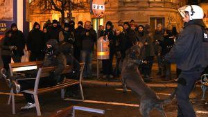 Protest mot  FÖP-balen i Wien.