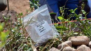 Arkeologiska fynd i en plastpåse