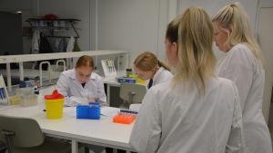 Fyra personer med vita laboratorierockar är samlade kring ett bord med provrör.