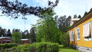 Sandbacka vårdcenter och gamla sanatoriet Tallgården.