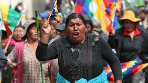 Evo Morales anhängare försökte storma parlamentet men drevs bort av soldater och poliser som använde tårgas mot demonstranterna