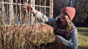 En kvinna rensar sly i trädgården