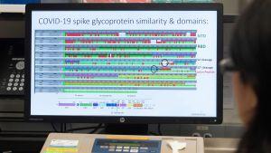 En dator i ett laboratorium. På skärmen visas en proteinstruktur.