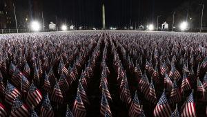 Tusentals små USA flaggor utplacerade på en gräsmatta utanför Capitolium.