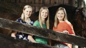 Kolme eläinlääkärikandia hevostallissa