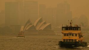 Rök över Sydney den 19.12.2019.