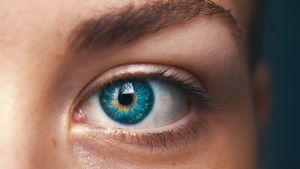 Ett öga i närbild.