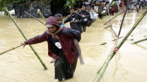 Över 430 000 rohingyer har flytt till grannlandet Bangladesh sedan den 25 augusti