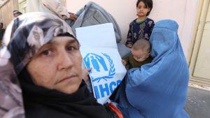 Familjer som har förlorat sina hem får hjälp av UNHCR i Herat