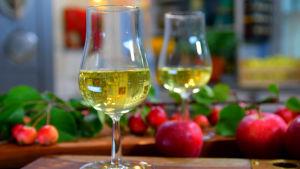 Två glas cider med röda äppel i bakgrunden.