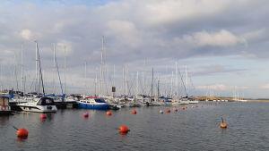 Segelbåtar i gästhamnen i östra hamnen i Hnagö.