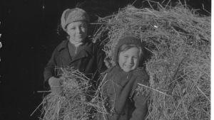 Vihtori och Maria Kirjanen från Ingermanland på gården Hännilä i Hiitola under fortsättningskriget.