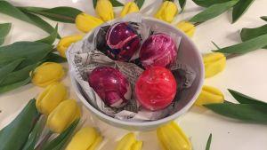 Kuvassa maalattuja pääsiäismunia tulppaanien keskellä.