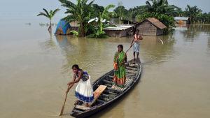 Miljoner människor i Indien, Nepal och Bangladesh har fly undan vattenmassorna när deras hem övervsämmades. Bilden är från delstaten Assam