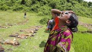 Armén har anklagat rohingyarebeller för att ha utfört massakrer på hinduiska bybor i Rakhine.