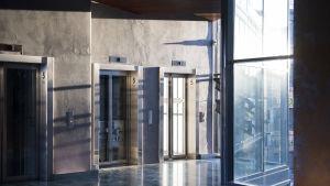 Kolme hissiä