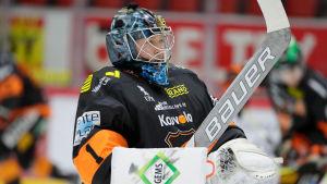 Juha Järvenpää är KooKoo:s målvakt säsongen 2017-2018.