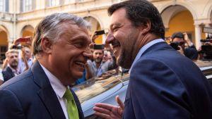 Italiens inrikesminister Matteo Salvini omfamnar sin vän Ungerns premiärminister Viktor Orbán. Milano 28.8. 2018