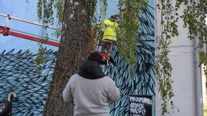 Muralmålning i Pojo dokumenteras.