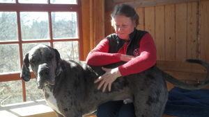Tuulikki Wahe-Rohrbach sitter med sin danska dog i ett lusthus på Korpo gård