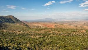 Östafrikanska gravsänkesystemet.