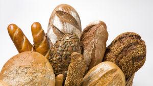 En korg med flera olika gräddade bröd mot en vit bakgrund.