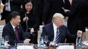 Xi Jinping och Donald Trump på G20-möte i Hamburg 2017.