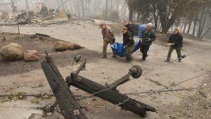 En grupp poliser bär på en liksäck med ett dödsoffer från skogsbränderna.