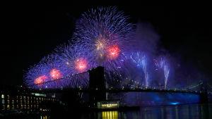 Fyrverkerier ovanför Brooklyn bridge på USA:s självständighetsdag.