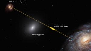 Havainnollistava kuva siitä, miten radiopurske voi kertoa välissä olevan galaksin koostumuksesta.