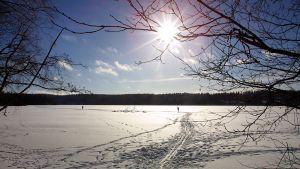 En frusen sjö på vintern