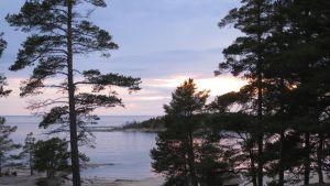 Utsikt från Pörkenäs lägergård i Jakobstad