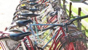 En lång rad med cyklar