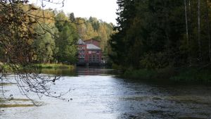 Svartån i Åminnefors