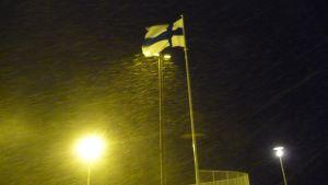 Finska flaggan vajade i snöyran dagen till ära.