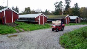Fodertruck på pälsfarm.