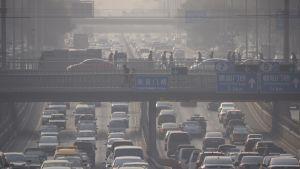 Avgaserna ligger tungt över Bejing.