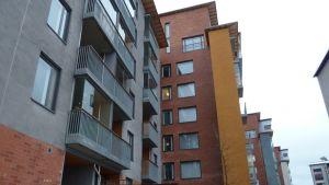 Nya hus i Ladugården