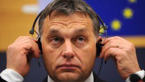 Ungerns premiärminister Viktor Orbán i EU-parlamentet i Strasbourg den 18 januari 2012.