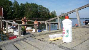 Spelar det nu verkligen någon roll om du tvättar mattorna i havet eller på land? Kolumnisten Jonas Jungar frågar sig vad de små enskilda miljögärningarna har för betydelse. Foto: Yle/Annika Bodman