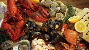musslor, hummer, kräftor, ostron, räkor och andra skaldjur